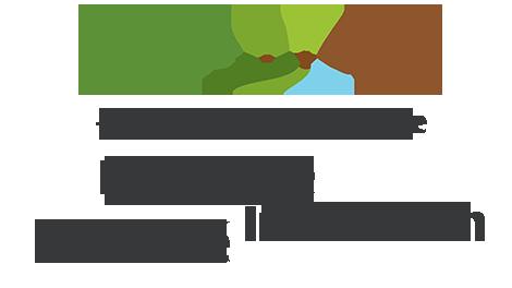 Stratégie Conseil - 25 années d'expérience - Expertise, Innovation, Fiablilité