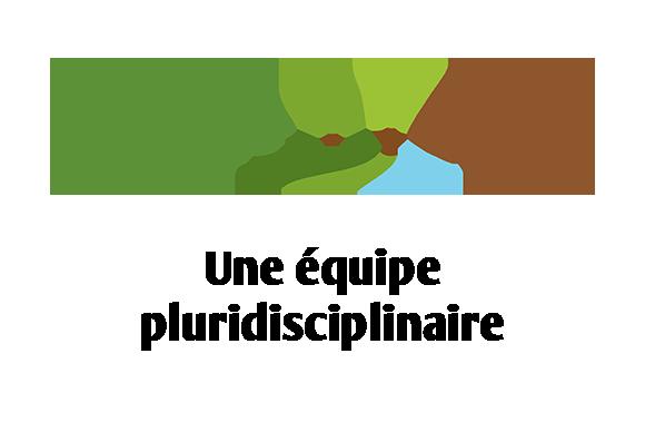 Stratégie Conseil - une équipe pluridisciplinaire